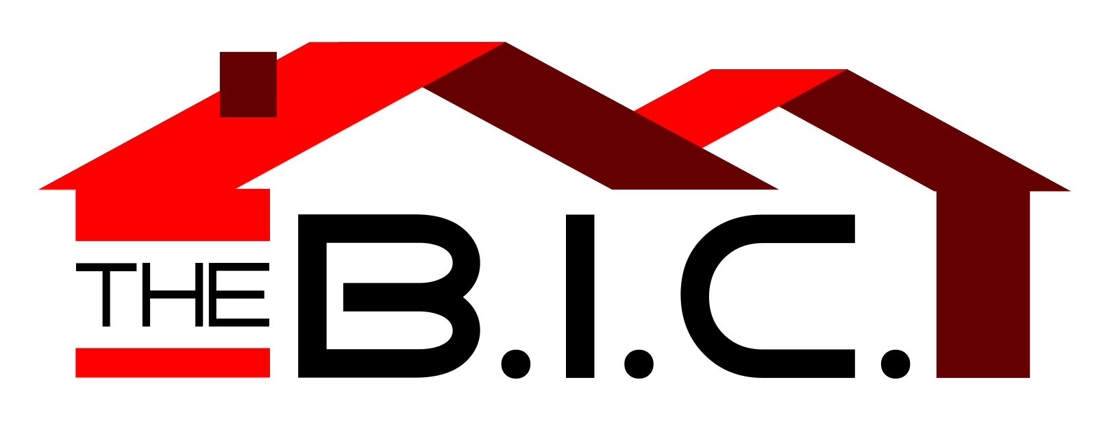 The Building Inspection Company