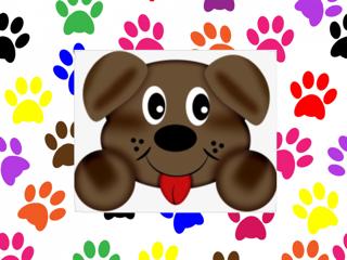 PUPPY FACE PET PARLOR LLC