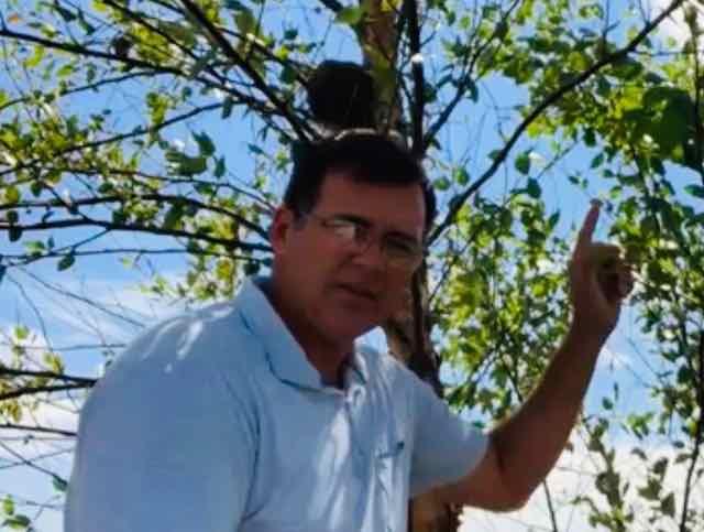 Certified Tree Service
