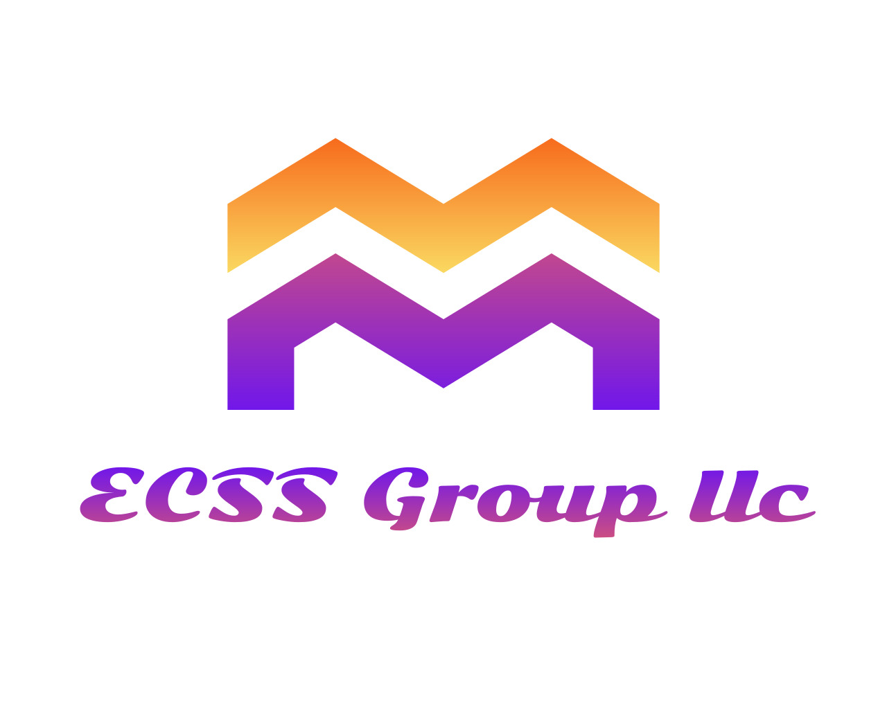 ECSS GROUP LLC