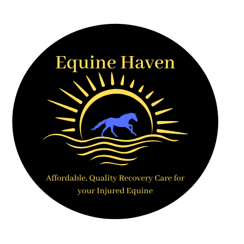 Equine Haven Recovery Care and Equestrian Centre Ltd