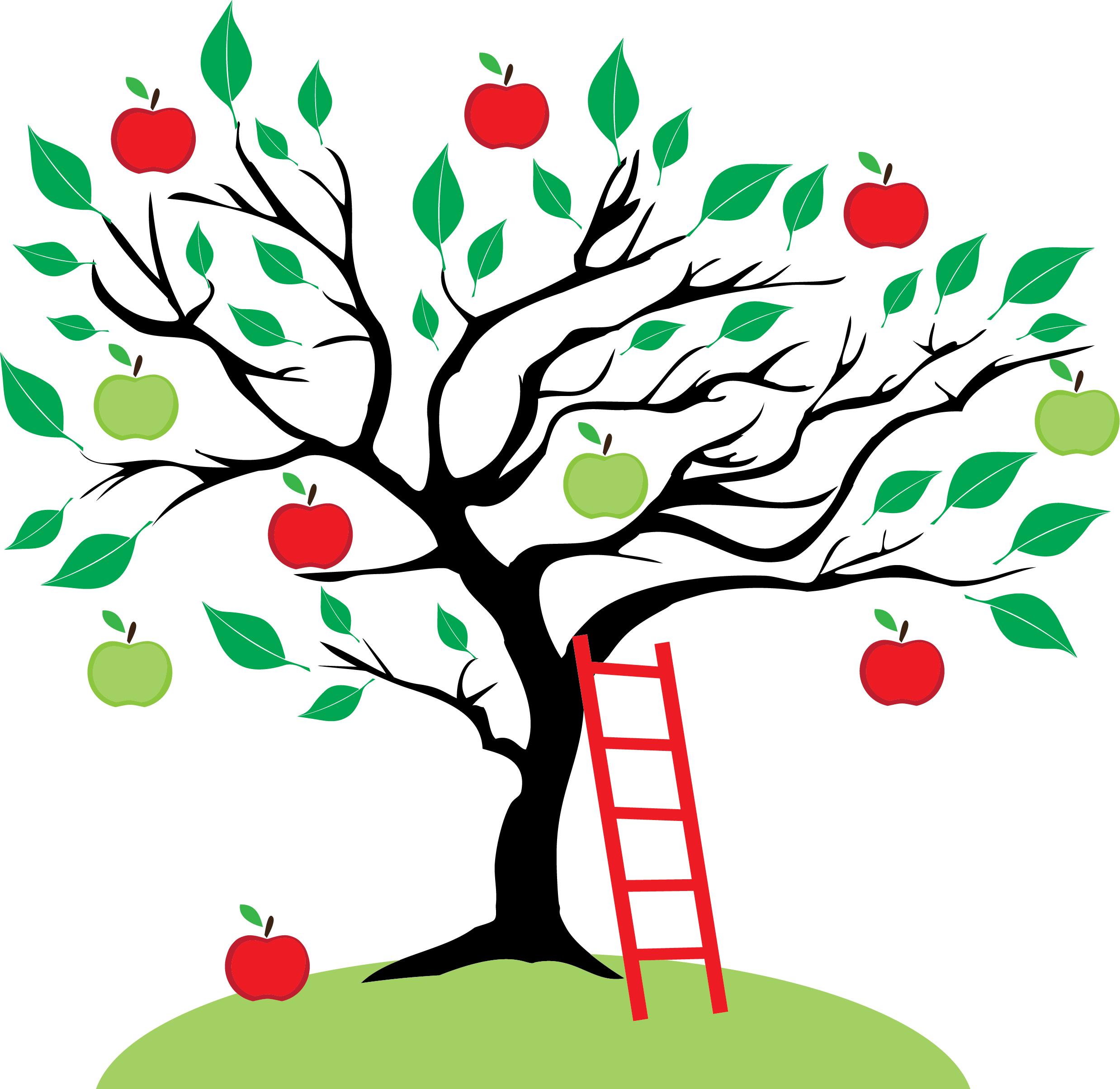 Avalon Montessori School