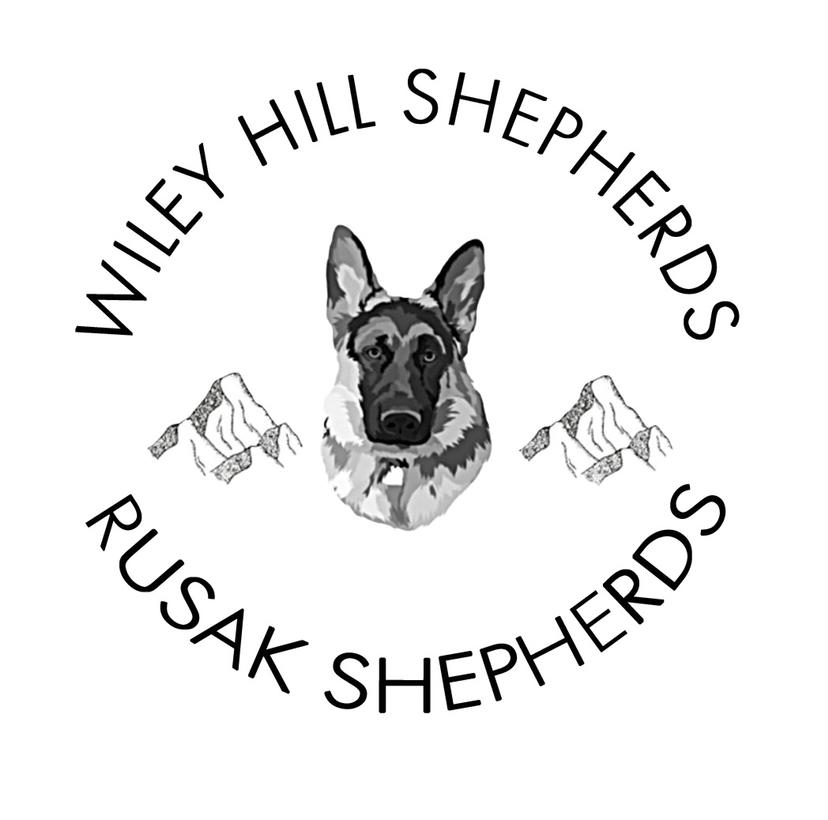 Rusak Shepherds/Wiley Hill Shepherds