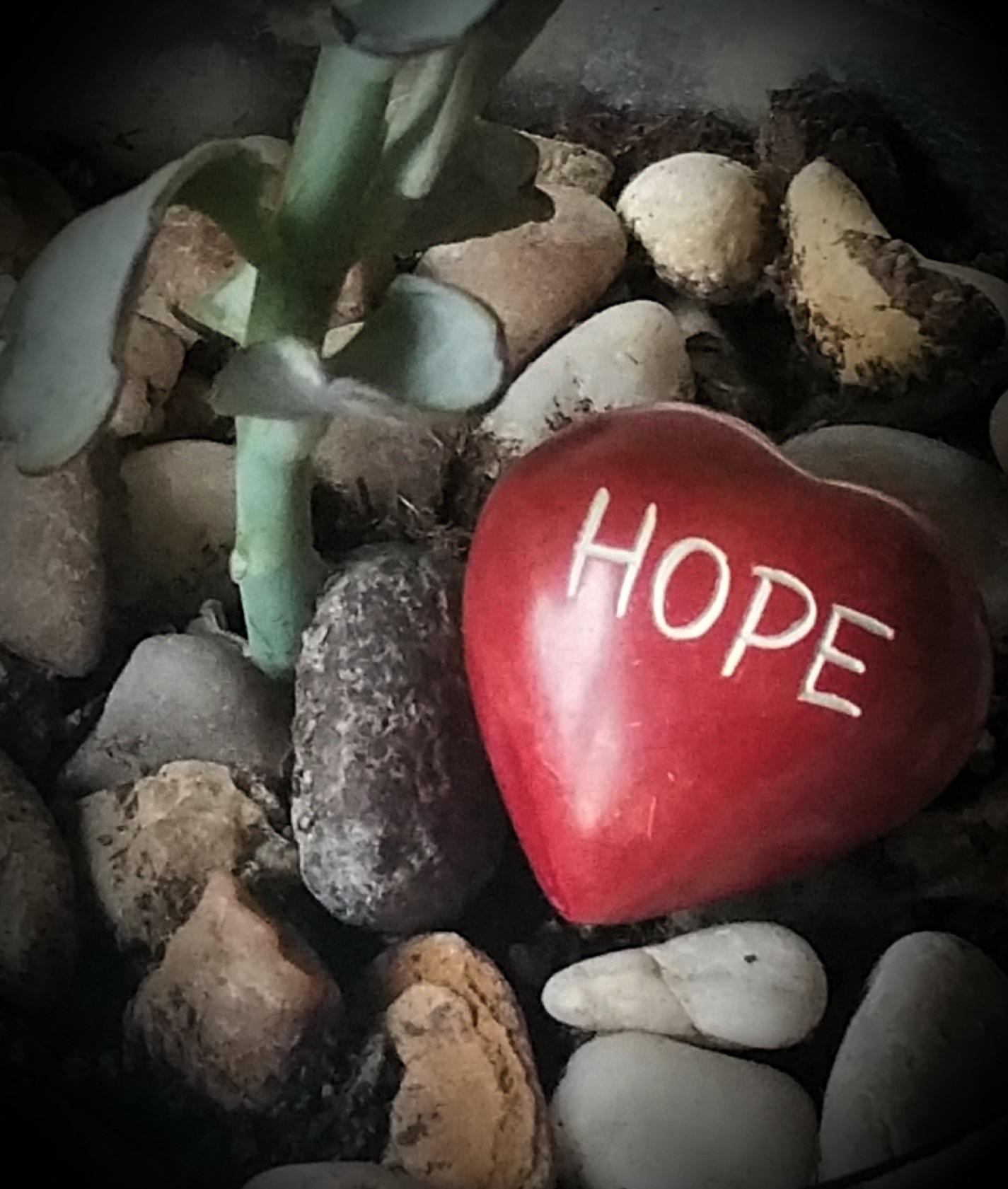 Got Hope Advance Care Planning Services
