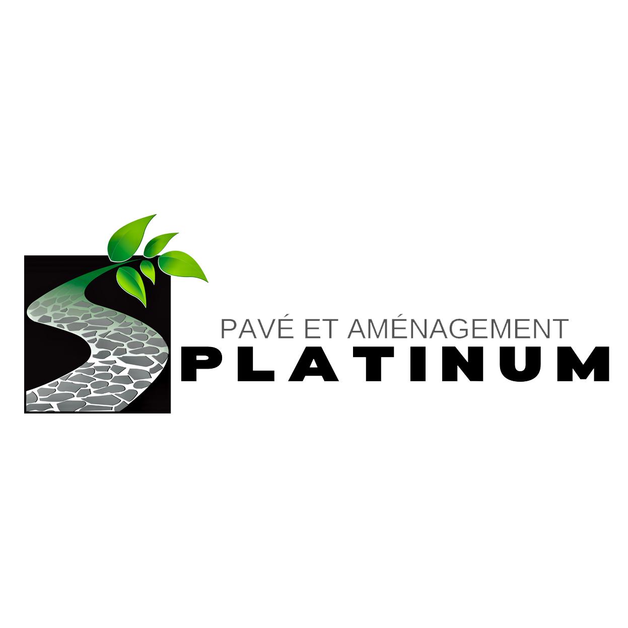 Pavé et Aménagement Platinum