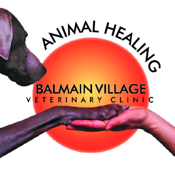 Balmain Village Veterinary Clinic