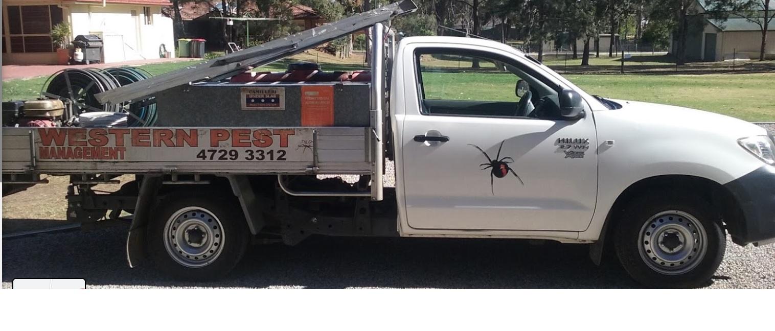 Western Pest Management