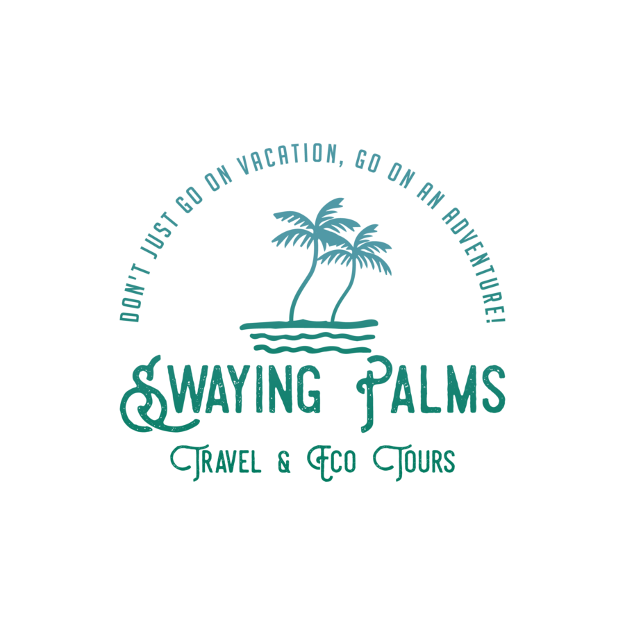 Swaying Palms Travel LLC - Wendy Anderson