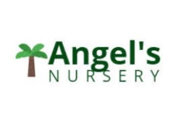 Angel's Nursery