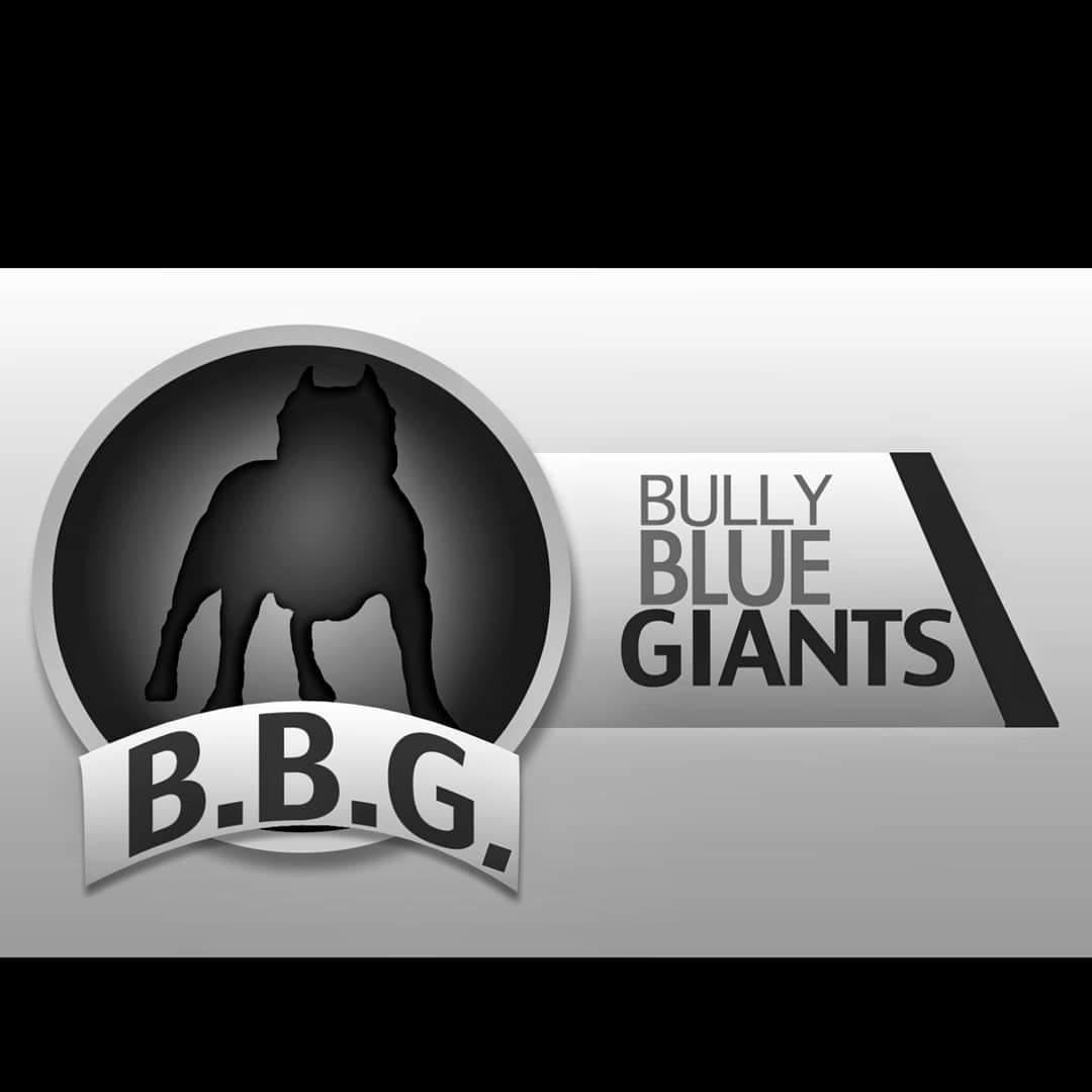 Bully Blue Giants
