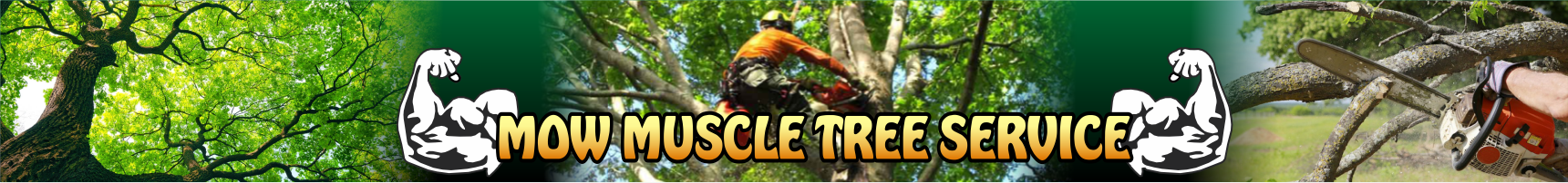 Mow Muscle Tree Services