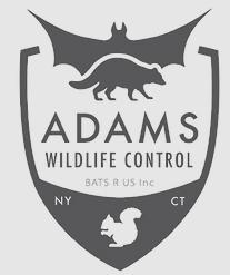 Adam's Wildlife Control