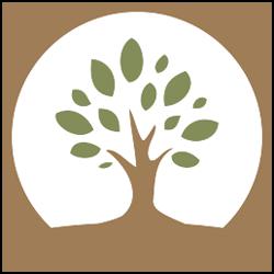 Treetop Pediatric Dentistry