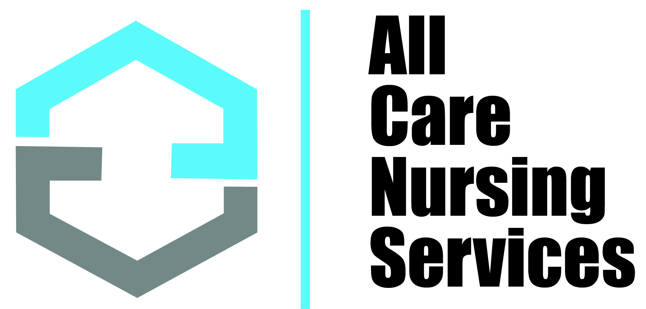 ALL CARE NURSING SERVICES INC