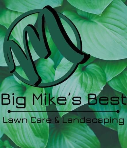 Big Mike's Best Lawn Care